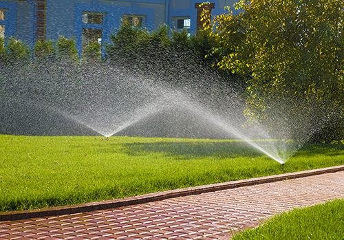 How to Efficiently and Effectively Water Your Lawn