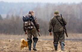 Photo: How to Choose Between Tree Stands or Ground Blinds When Hunting