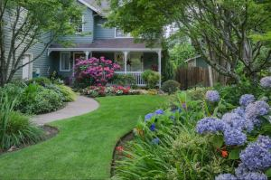 Photo: What Will You Do to Your Yard This Spring?