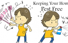 Photo: Best Ways to Keep Your Home Pest Free, Inside and Out