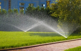 Photo: How to Efficiently and Effectively Water Your Lawn