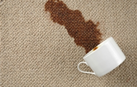 Photo: How to Remove Carpet Stains