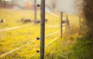 Electric fencing equipment like wire, energizers and strainers and more are at Sutherlands.