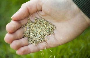 Mulch Lawn Landscaping Amp Garden Supplies Sutherlands