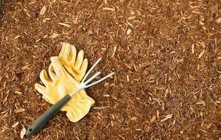 Sutherlands has ground cover such as wood bark and mulch for your garden.