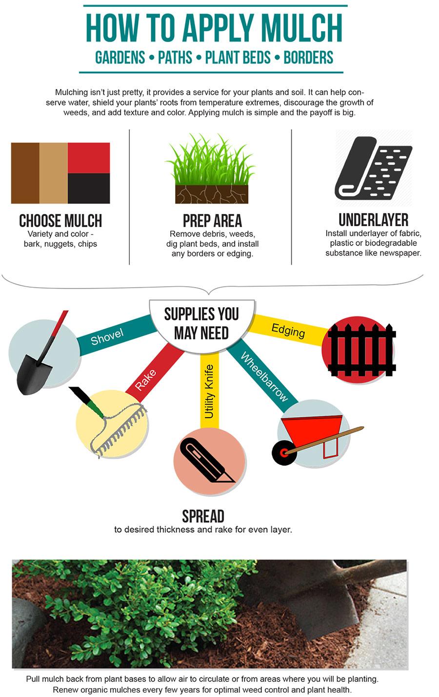 Lawn & Garden Infographic