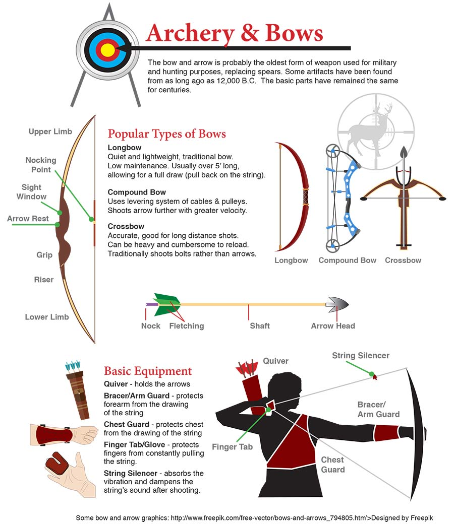 Sporting Goods Infographic