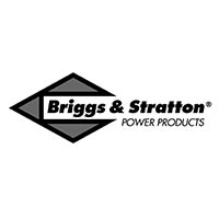If it's powered by Briggs and Stratton you know it'll last for the rest of your life.