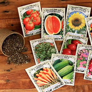 Grow your garden with quality seed