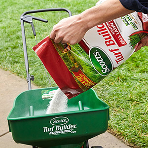 Get a beautiful yard and curb appeal with the right fertilizer