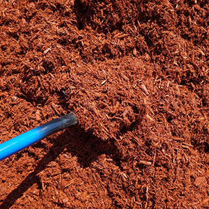 Add a layer of mulch to control moisture and prevent weeds