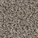 Medalist Brown 01 Carpet