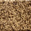 Aquarius Tiger Eye Carpet, Per Square Foot