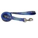 3/8-Inch X 6-Foot LazerBrite Blue Bones Reflective Dog Leash