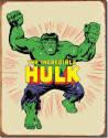 Marvel Comics Retro The Incredible Hulk Tin Sign