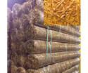 8 x 112-1/2-Foot Premier Straw Single Blanket