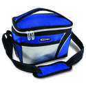 Assorted Color 6-Can Insulated Cooler Bag