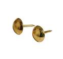 Smooth-Head Brass Plated Furniture Nail