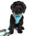 Dog Owners Outdoor Gear DOOG9078
