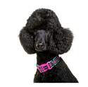 Dog Owners Outdoor Gear DOOG5430