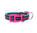 Neon High Visibility Rin Tin Tin Dog Collar, Medium