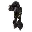 Dog Owners Outdoor Gear DOOG6544