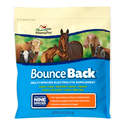 4-Ounce Bounce Back Multi-Species Electrolyte Supplement