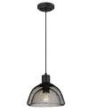 1-Light Matte Black, Cage Shade Pendant