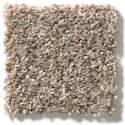 Cabana Bay Mesa Carpet, Per Square Foot