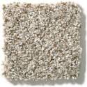 Cabana Bay Beach House Carpet, Per Square Foot
