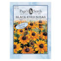 Black/Gold/Yellow August To October Bloom Blackeyed Susan Flower Seed