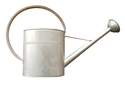 3.2-Gallon Galvanized Vintage Watering Can