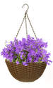 14-Inch Brown Woven Hanging Basket