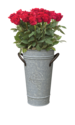9-Inch Rustic Galvanized Fresh Cut Flower Vase