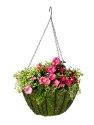 12 in Moss Round Hanging Basket Liner