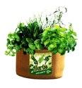 5-Gallon Herb Burlap Grow Bag