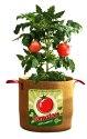 20-Gallon Tomato Burlap Grow Bag