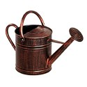 2-Gallon Brushed Bronze Watering Can