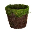 7-Inch Moss Covered Basket With Plastic Insert