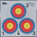 17-inch x 17-inch Gray Vegas 3-Spot Triangular Target 500-Pack