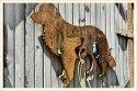 Dog Hook Plaque