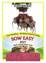 Beet Bulls Blood Dark Red Sow Easy Seed