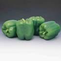 Pepper Garden Leader Monster Bell Seed
