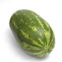 Watermelon Garden Leader Monster Seed
