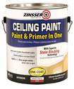 1-Gallon Ceiling Paint