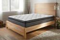 Warren II  15-Inch Plush Euro Pillow Top Full Mattress