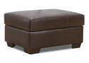 Alden Chestnut Leather Storage Ottoman