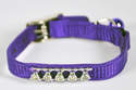8-Inch Purple Nylon Fashion Jeweled Cat Collar