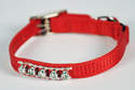 10-Inch Red Nylon Fashion Jeweled Cat Collar