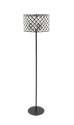 62-Inch Metal Acrylic Floor Lamp